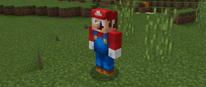 Mario Craft Add-on | Minecraft PE Mods