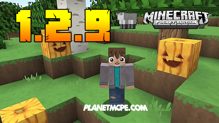 Download Minecraft PE 1.2.9 Free for Android