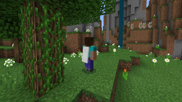 Download Addon Wearable Cape Banners for Minecraft Bedrock 1.8.0 - Android