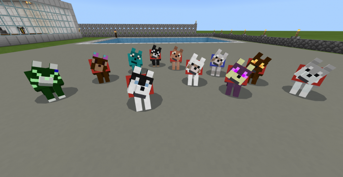 Addon Wolves+ 1.13